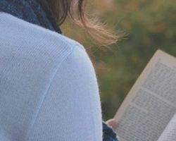 olvasás könyv természet nyugalom